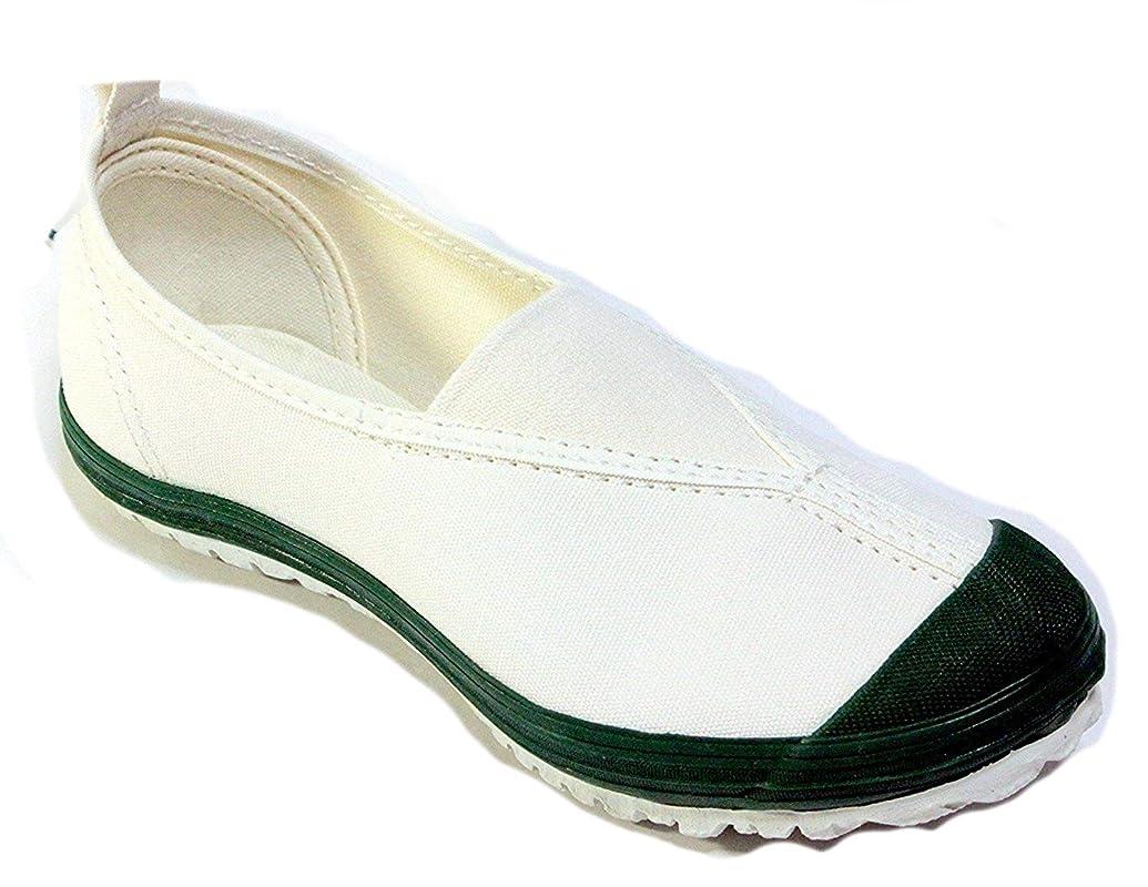 怪物襲撃興奮するムーンスター 上履き 上靴 学校指定 ハイスクール4型 (24.5, グリーン)