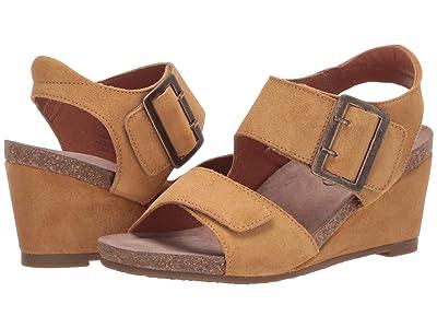 Taos Footwear High Society (Wheat) Women