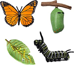 Realistic Butterfly Life Growth Cycle -Plastic Caterpillars to Monarch Butterfly Life Cycle Model Toys Teaching Aids Educational Toys Science Classroom Accessories
