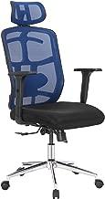 TOPSKY Mesh Computer Office Chair Ergonomic Design Chair Skeletal Back 3D Armrest Synchronous MechanismHanger Function (Navy/Black)