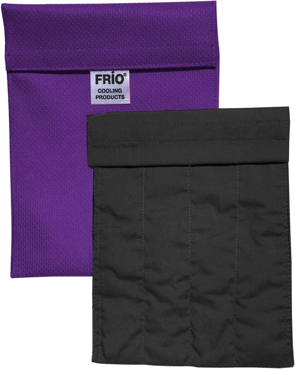FRIO Cooling 4 years warranty Wallet-Large - Purple Without E Insulin Cool Purchase Keep