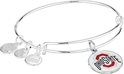 Color Infusion Ohio State University Logo II Bangle