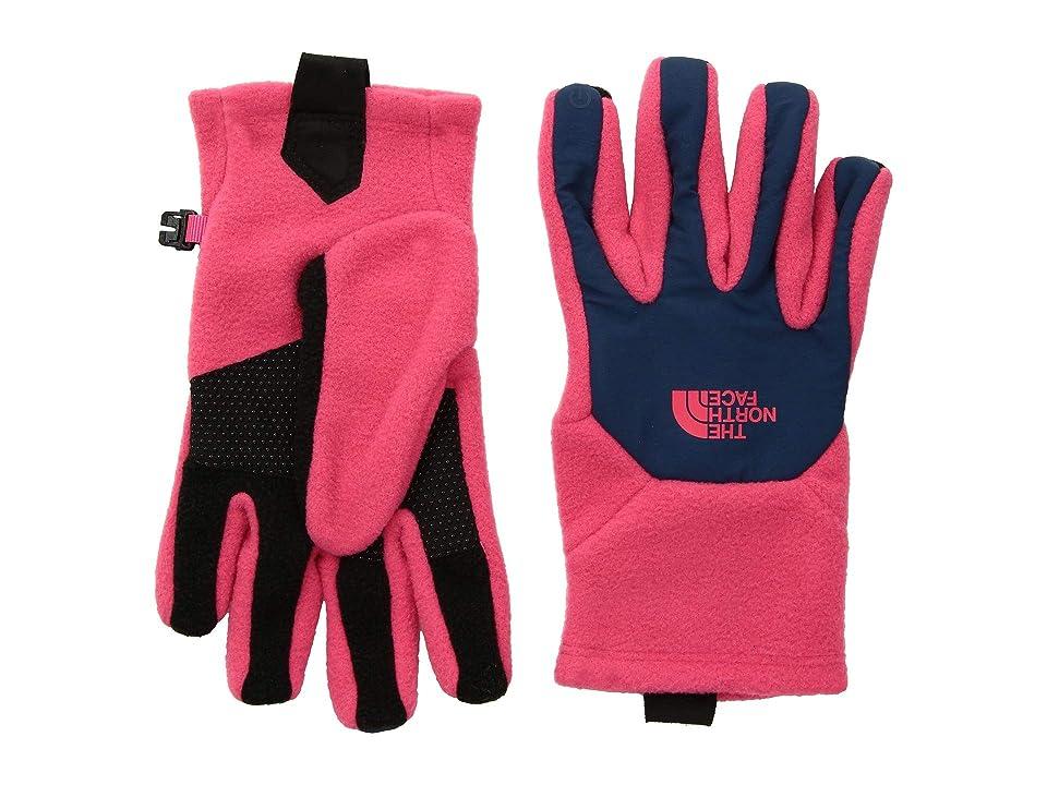 The North Face Kids Denali Etiptm Gloves (Big Kids) (Atomic Pink/Blue Wing Teal) Extreme Cold Weather Gloves
