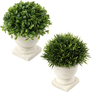 Artificial Plant in Pot Plastic Mini Plants Faux Potted Herbs Small Houseplants Unique Fake Green Grass Flower in Cement Planter for Home Bedroom Shelf Desk Decor 2 Pcs