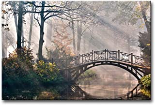 Autumn Tree Canvas Print Wall Art Painting for Home Decor,Tranquil Autumn Forest with River Bridge and Morning Light Rays Sunshine in The Netherlands Paintings Modern Framed Artwork