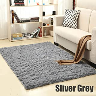 Shaggy Carpet for Living Room Home Warm Plush Floor Rugs Fluffy Mats Kids Room Faux Fur Area Rug Living Room Mats Silky Rugs,Sliver Gray,60x90cm