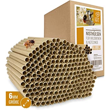 4-6 mm!Wildbienen Bambusröhrchen Insektenhotel 12 cm zum basteln mit Lehmpulver!