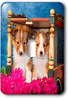 3dRose lsp_207514_1 Shetland sheepdog puppies sitting in a little circus wagon, MR Single Toggle Switch