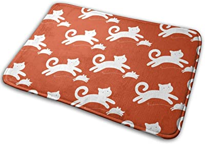 Cat Catches The Mouse Carpet Non-Slip Welcome Front Doormat Entryway Carpet Washable Outdoor Indoor Mat Room Rug 15.7 X 23.6 inch