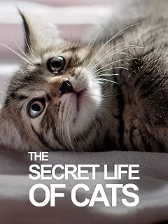Best secret life of cats Reviews