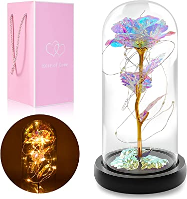 Aetegit Colorful Rose Artificial Flower Gifts for Women Girls Christmas Decorations in Glass Dome w/Led Light String,Unique Gifts for Women Xmas,Valentine's Day,Mothers Day,Wedding Anniversary