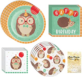 Hedgehog Party Supplies, Girl or Boy Birthday, 16 Guests, 65 Pieces, Disposable Paper Dinnerware, Plate and Napkin Set