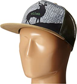 Patagonia geodesic flying fish trucker hat feather grey  c90042608a7