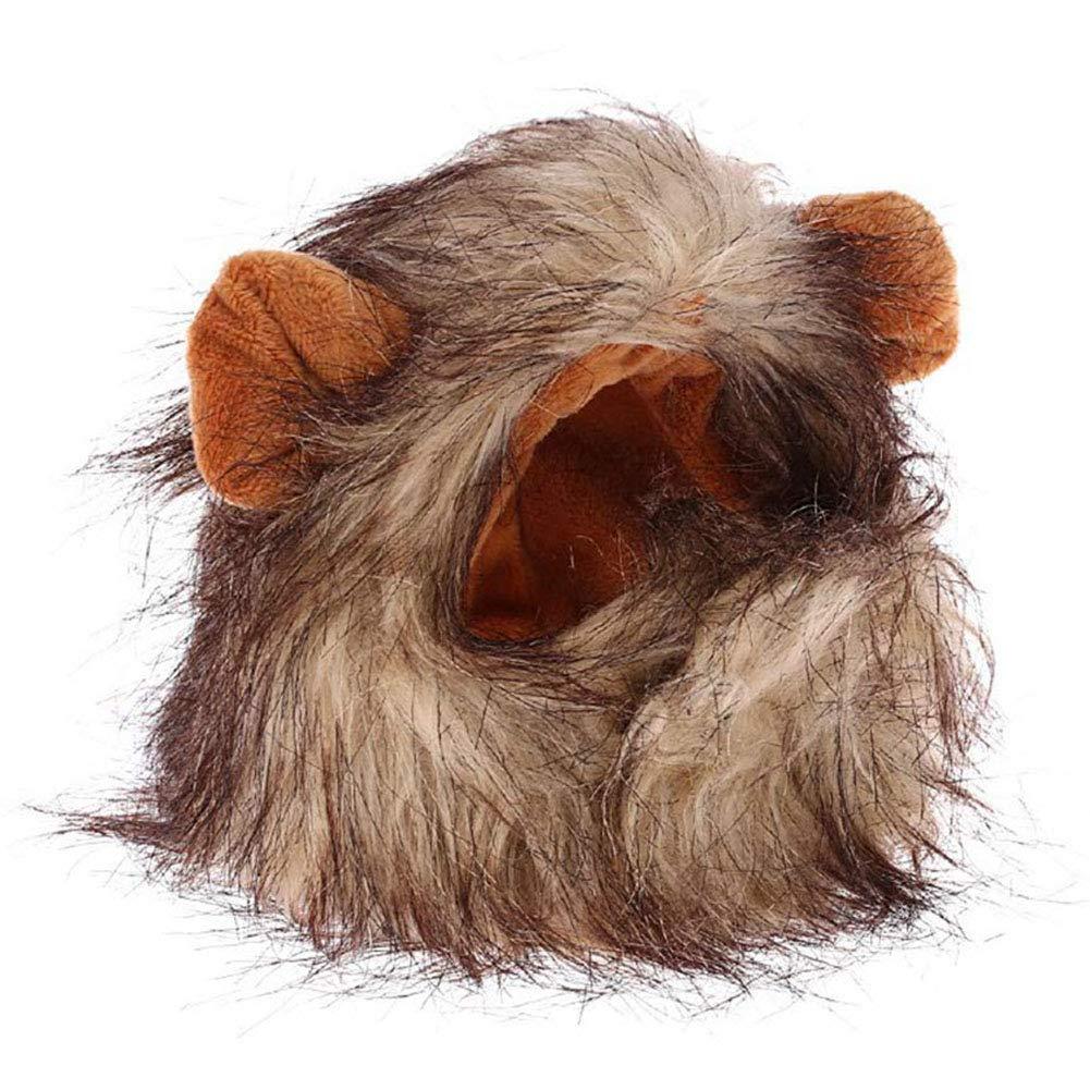 Hihey Melena de león para Gatos Lindo Disfraz de león Peluca Cosplay para Mascota Perros pequeños Gatos: Amazon.es: Hogar