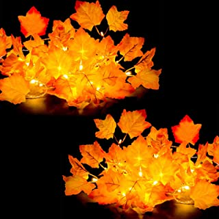 [2-Pack] Fall Decor for Home Thanksgiving Decorations Lighted Fall Garland 8.2ft 20 LED,..