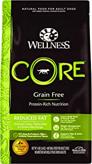 Best wellness complete health lamb and barley Reviews