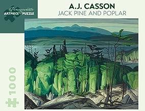 Best aj casson book Reviews