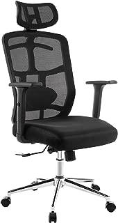 TOPSKY Mesh Computer Office Chair Ergonomic Design Chair Skeletal Back 3D Armrest Synchronous MechanismHanger Function(Black)