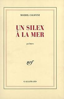Un silex à la mer (Blanche) (French Edition)