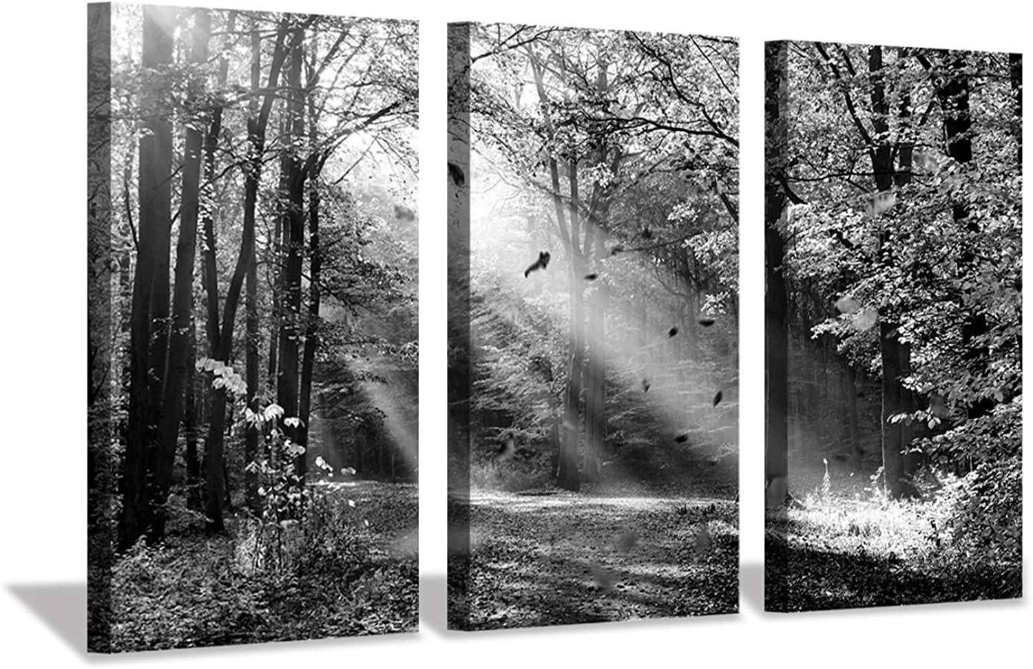Vintage Forest Artwork Landscape Picture  Sunlight & Shadow Print on Canvas for Wall Art
