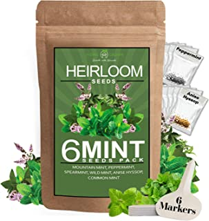 6 Mint Seeds Garden Pack - Mountain Mint, Spearmint, Peppermint, Wild Mint, Anise Hyssop, and Common Mint | Quality Herb S...