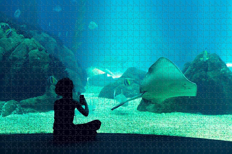 Portugal Same day shipping Aquarium Lisbon Trust 1000 Piece Puzzle Game f Jigsaw Artwork