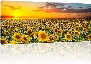 Best framed sunflower art Reviews