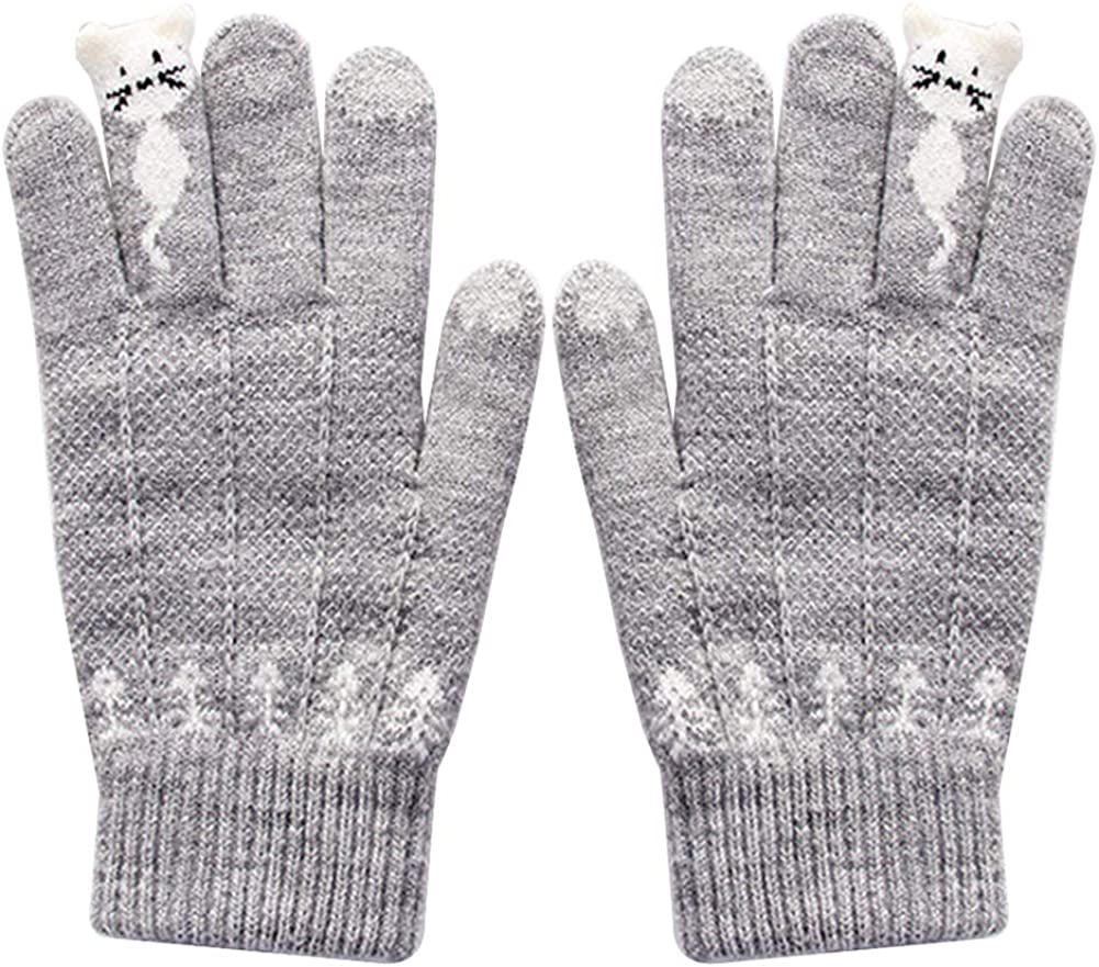 Gloves Female Winter Touch Screen Cold Warm Gloves Thick Knit Gloves Protective Gloves