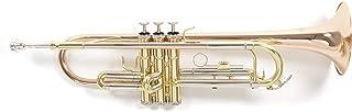 Roy Benson TR-202G Trompeta con Estuche