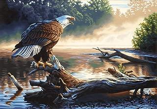 Dimensions PBN 20x14 Eagle Hunter