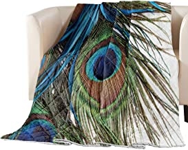 Big buy store Thin Comforter Bedspread Throw Blanket Peacock Feather Design Lightweight Reversible Bedding Quilt Colorful ...
