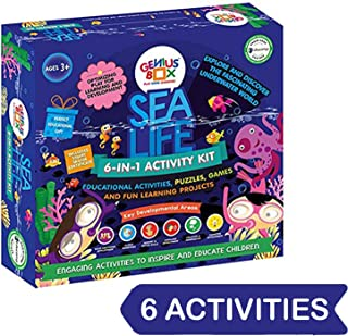Genius Box Sea Life Activity Kit