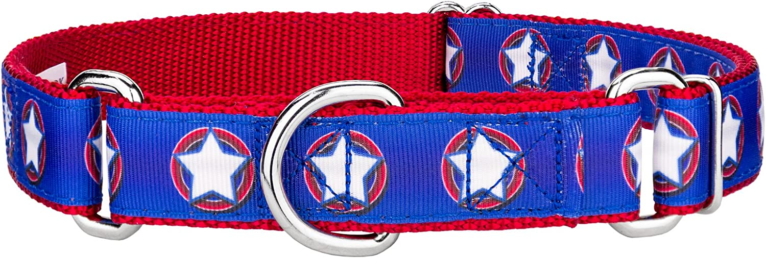 Country Brook Design 3 4 inch American Star Ribbon Martingale Dog Collar  Small