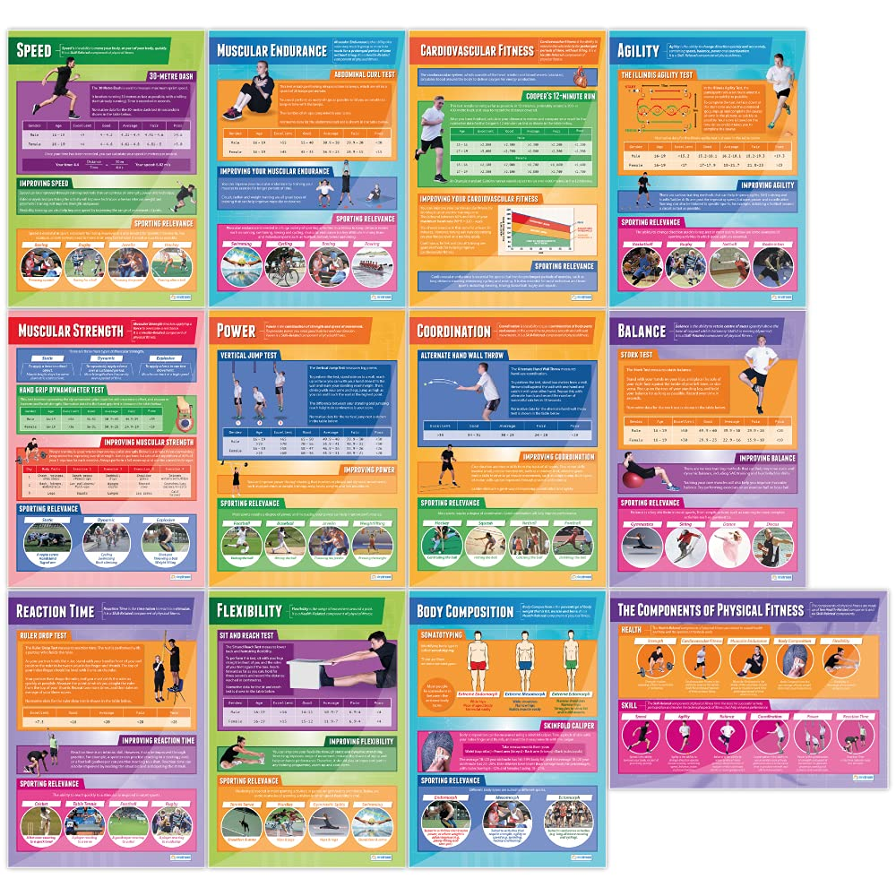 Components Popular popular of Physical Fitness Spasm price Posters PE Set - 12