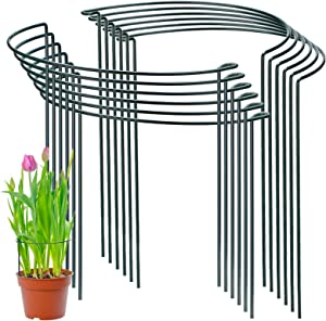 PAFUWEI 12 Pack Plant Support Stakes, 10