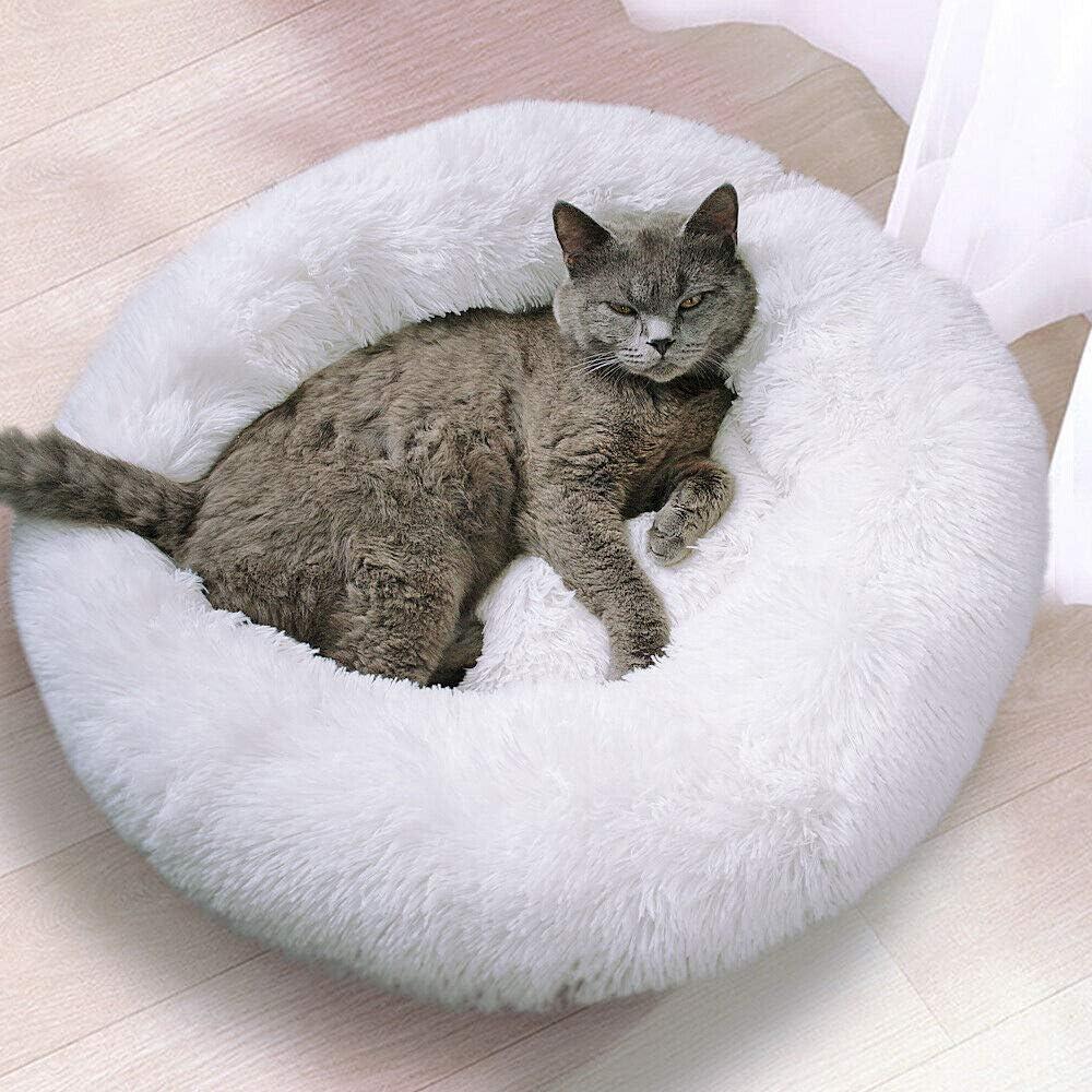 Minneapolis Mall Mollismoons Best Product for Persian pet Over item handling Bedfor Cats beds