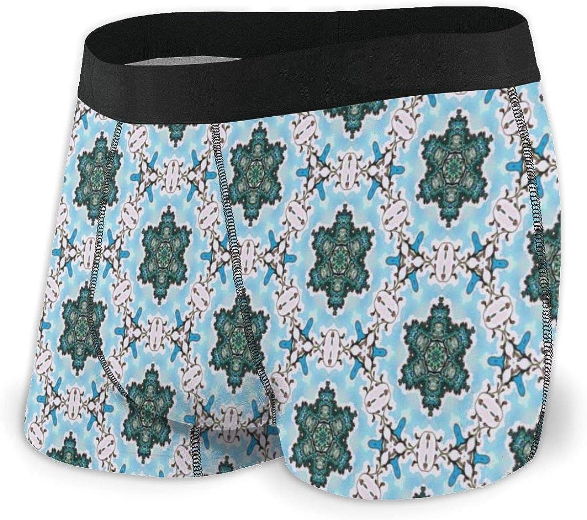 Mens Boxer Briefs Classic Luxury and Elegant Popular Modern Breathable Underwear
