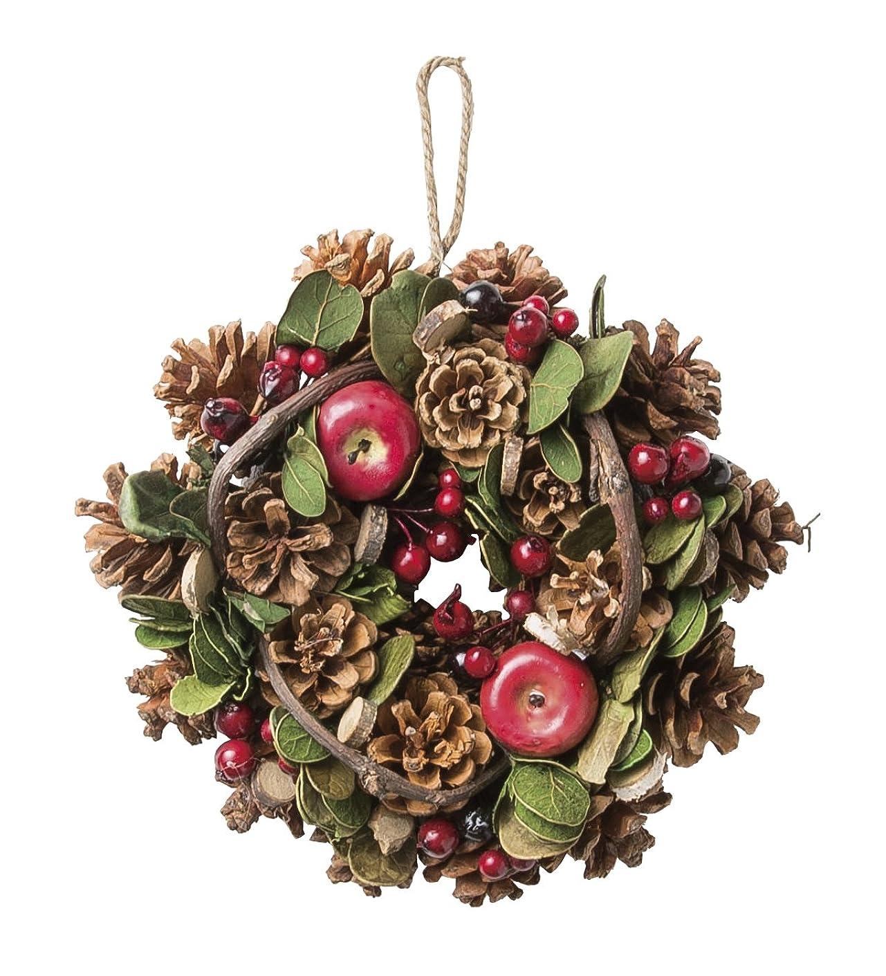 面積成功保護する大橋新治商店 木の実のリース Natural Wreath リース 20cm 木の実ミックス 28-004