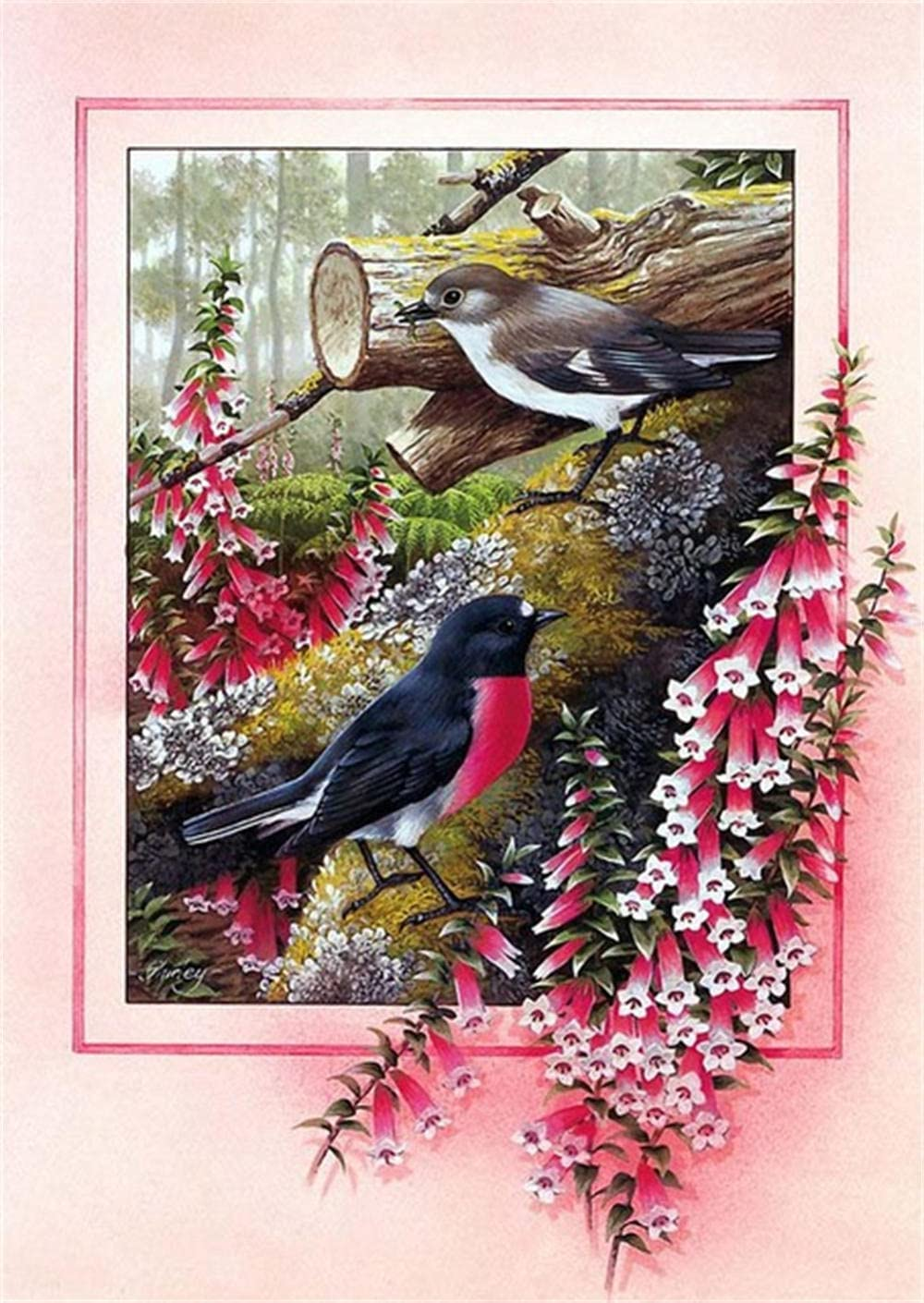 Large Size 5D Diamond Factory outlet Max 77% OFF Painting for Bird Kit DIY