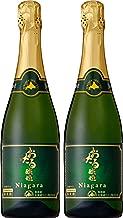 北海道ワイン おたるナイヤガラスパークリング [ スパークリング 甘口 日本 720mlx2本 ]
