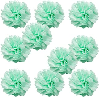WYZworks Set of 10 - Seafoam Green 16