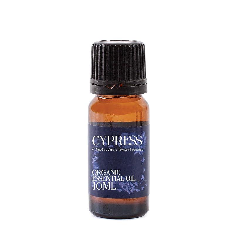 石炭状ロビーCypress Organic Essential Oil - 10ml - 100% Pure
