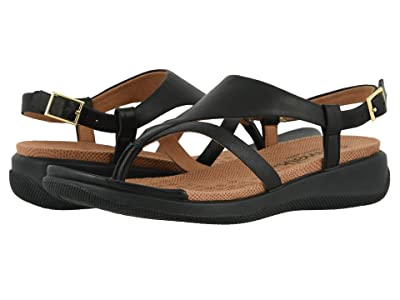 SoftWalk Temara (Black) Women