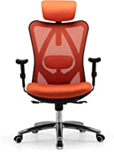 Sihoo Ergonomic Office Chair, Computer Desk Chair, 3D Adjustable High-Back, Breathable Skin-Friendly Mesh with Armrest, Lu...