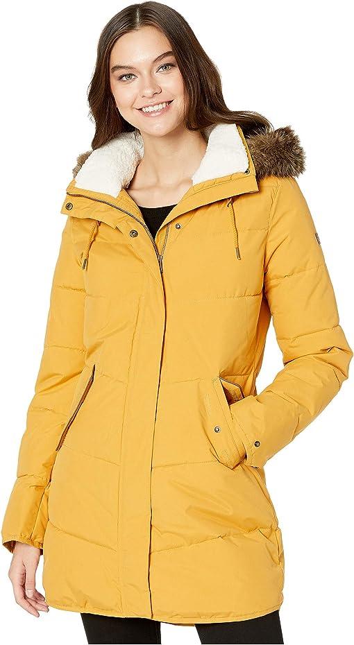 Spruce Yellow