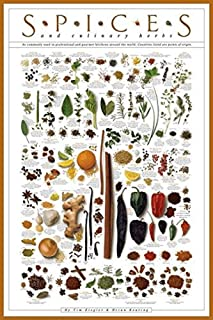 Picture Peddler Laminated Spices and Culinary Herbs Gourmet Kitchen Cooking Chart Poster 24x36