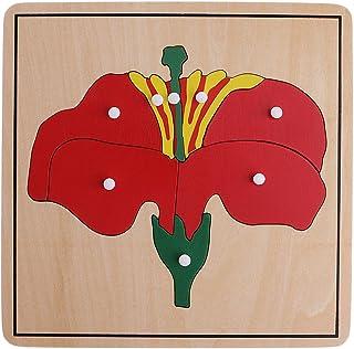 Baoblaze Montessori Botany Material 3 Plywood Plant Puzzles Toy  Children