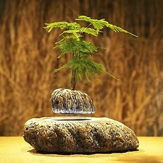 Japanese style Levitating Air Bonsai Pot - Magnetic Levitation Suspension flower (1)