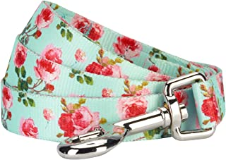floral dog collar and leash