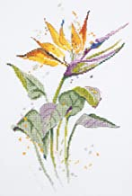"""Panna Embroidery Kit - Flowers Cross Stitch Kits for Beginners and Adults - Counted 7.9"""" x 11.8"""" or 20 x 30cm - DIY Cross Stich Kit - Fun Needlework Pattern (Bird of Paradise)"""